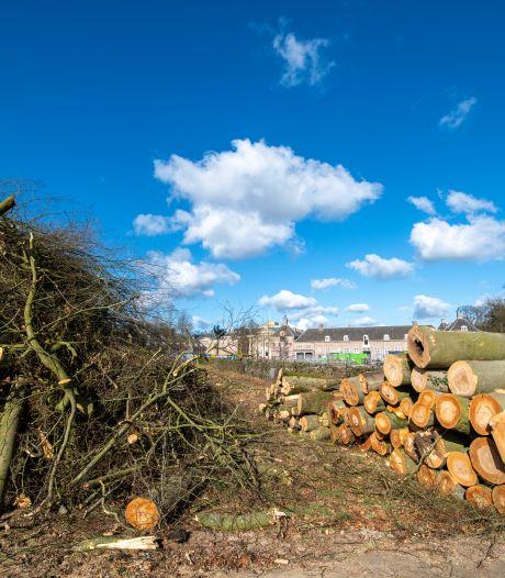 Gemeente Apeldoorn steunt bomenkap op Het Loo: 'De generaties na ons hebben hier veel profijt van'