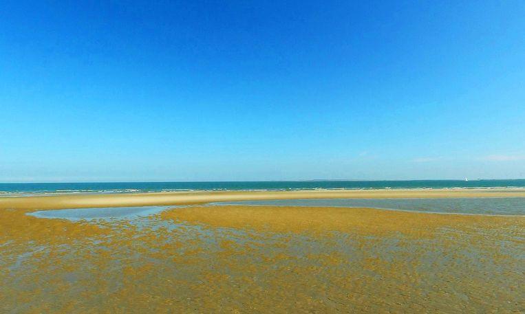 Het strand bij Vrouwenpolder. De vreemdelingen werden aangetroffen op open water. Beeld Google Streetview.