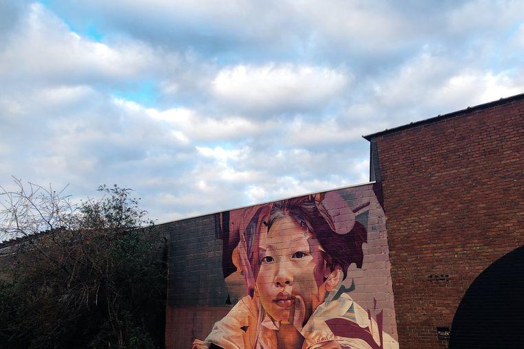 Graffiti-kunstenaars leven zich uit aan de dokken. Alleen al hun werk maakt de wandeling zeer Instagrammable. Beeld Freek Evers