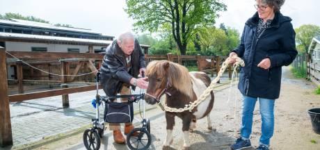 Een pony in de zorg, helpt dat écht? 'Zet er een op de binnenplaats van elk verpleeghuis in Nederland'