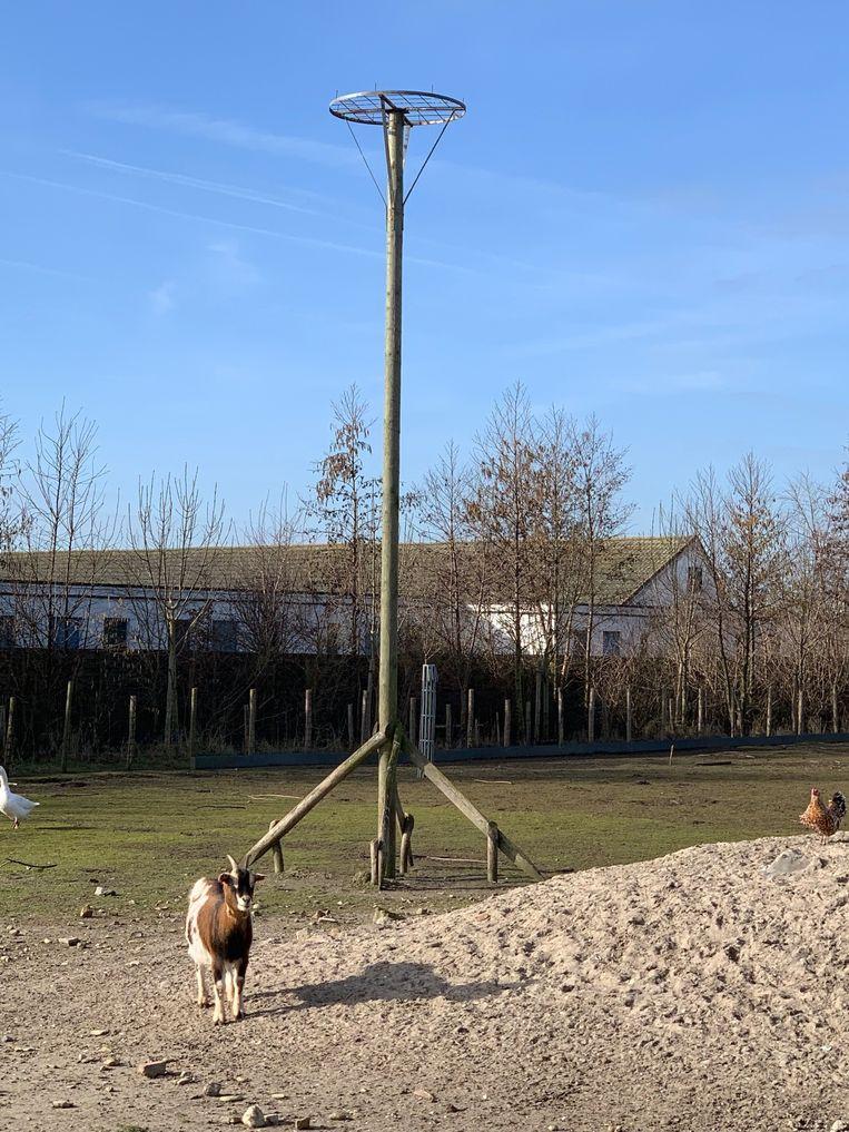 Willy Vanlandschoot bouwt nestpalen