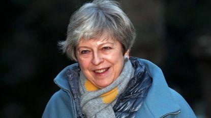 """""""Tegenstanders brexit zullen politieke tsunami ontketenen"""""""