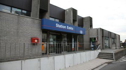 """Trein doortrekken tot in Maldegem of Brugge: """"Eeklo mag geen eindstation blijven!"""""""