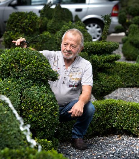 Tinus Renders uit Eindhoven weet hoe je buxus groen houdt