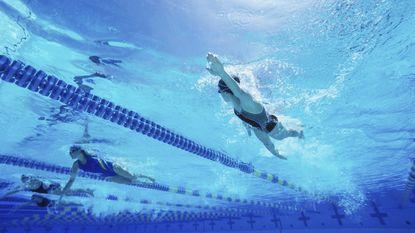 Politie verhoort asielzoekers na klacht over ongewenst gedrag in zwembad Lier