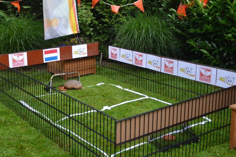 Volgens Bert gaat Oranje verliezen van Spanje maar winnen van Australië en Chili. Beeld Leprastichting