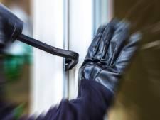 Jonge inbrekers aangehouden in Geersdijk