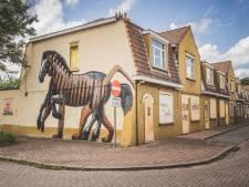 De te slopen Bernadettewijk: tussen versiering en verloedering. Wordt dit het nieuwe graffitiparadijs?
