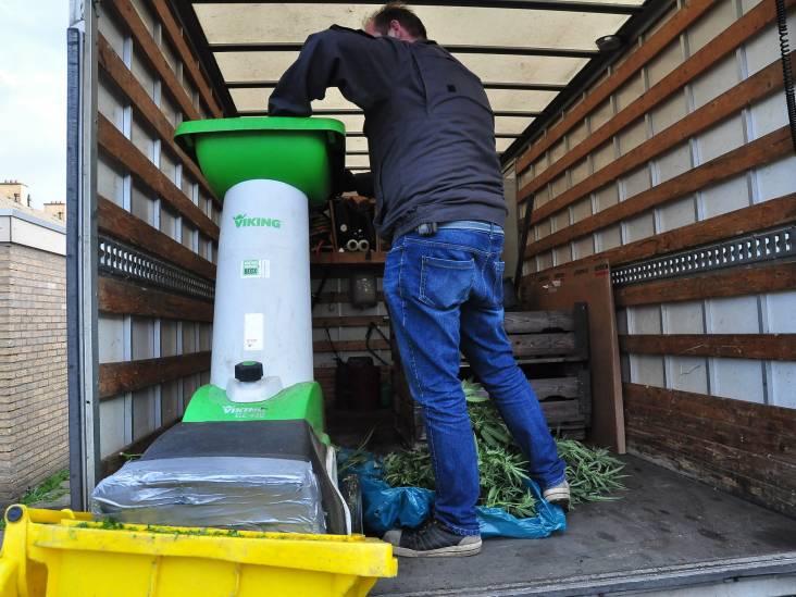 Hennepkwekerij in woning in Waalwijk ontdekt, planten direct venietigd