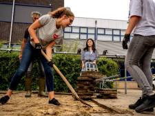 'Ondernemend leren' op Pax in Druten: leerlingen bouwen en runnen eigen plantenkas op school