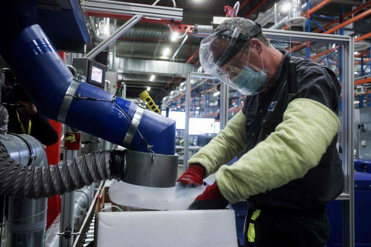 Een werknemer van Pfizer in Puurs. Beeld AFP