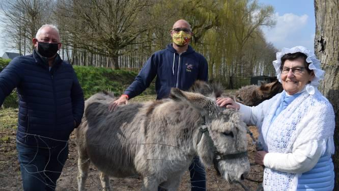 """Boekhoute en Bassevelde slaan handen in mekaar voor een Gîrnaert-Ezelwanding: """"En nadien gezellig terrasje doen"""""""
