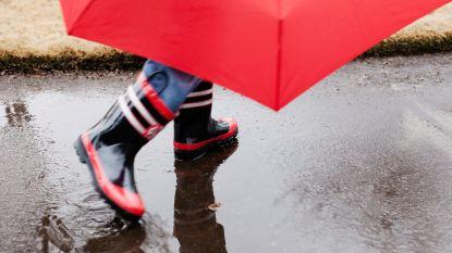 Noodnummer 1722 geactiveerd: flink wat regen en wind verwacht