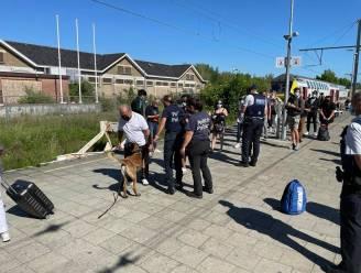 Tien illegalen opgepakt bij grootschalige controle aan station