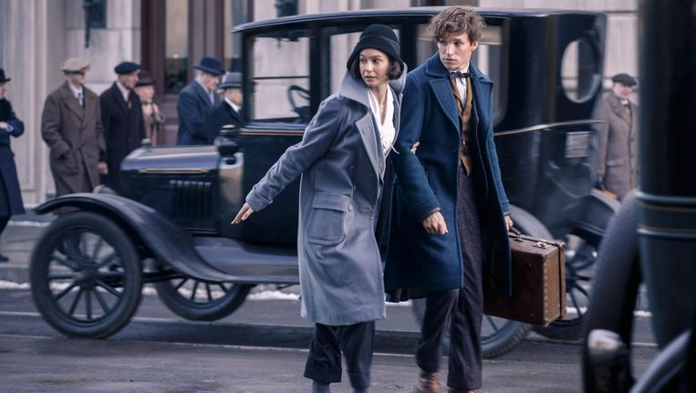 Fantastic Beasts and Where to Find Them   Het Parool