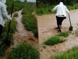 Modderstroom gutst door wei in Heuvelland