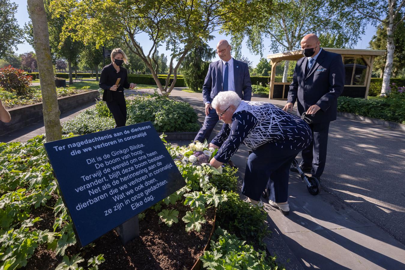 In Kampen werd onlangs een 'boom van hoop' geplant.