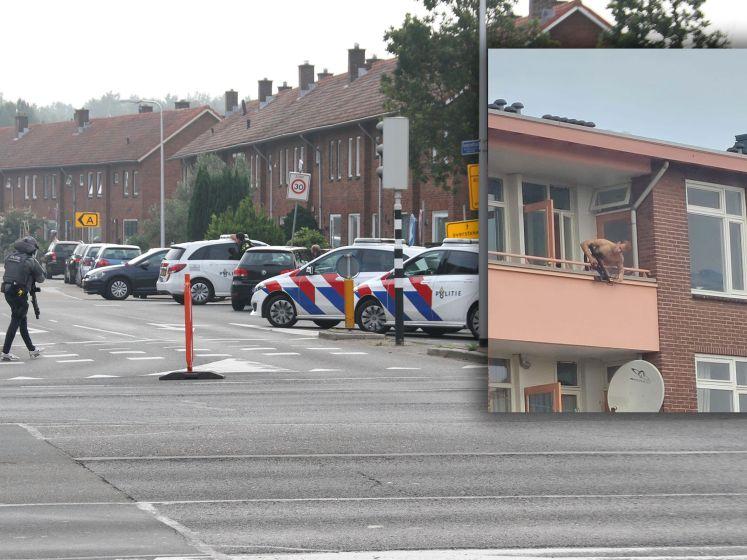 Doden bij incident met kruisboog in Almelo