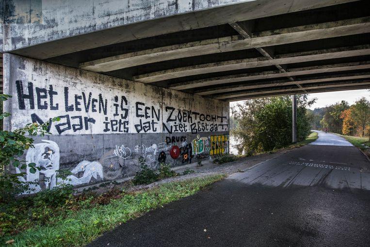 Onder de brug in Zwijnaarde, waar de vrienden hun trainingstochten begonnen. Beeld jonas lampens