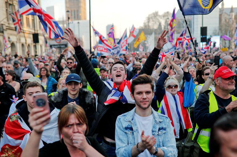 Pro-brexitprotest voor het parlement in Londen.'De brexit verstoort de machtsbalans in de Europese Unie', zegt Garton Ash. Beeld REUTERS