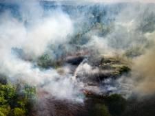 Heel Herkenbosch ontruimd vanwege grote natuurbrand