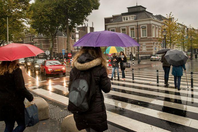 Het zebrapad tussen het Valkenberg en de Willemstraat in Breda is breed genoeg. Toch meent de wijkraad Stadshart/Valkenberg dat de oversteek onoverzichtelijk is, er wordt gepleit voor knipperlichten.