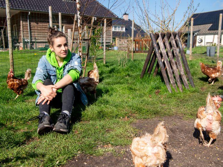 Uitgelegde kippen zijn klaar voor de soep, maar Laureen (25) redt ze met eigen opvanghuis in Dedemsvaart: 'Kan ze niet aan hun lot overlaten'