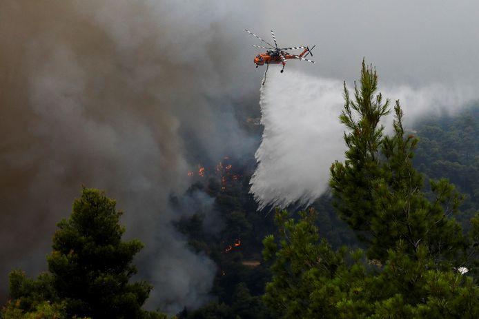 Incendi boschivi in Grecia.