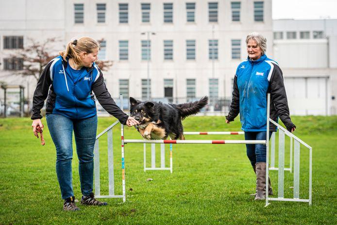 Voorzitter Femke Wiegel (l) en secretaris Anette Lens van de Alphense Honden Club laten zien hoe behendig Silvas over hordes springt.