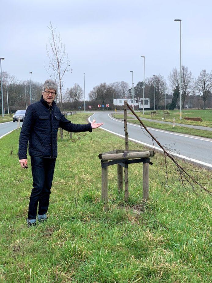 """Herman Van Driessche over de afgeknakte bomen op de N47: """"ze kregen te weinig water""""."""