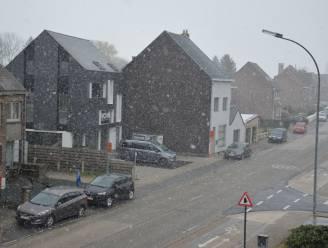 Ook in Ninove valt er sneeuw uit de lucht in april
