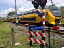 Pool misdraagt zich in trein en wordt opgepakt in Goes