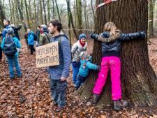 Kettingzaag dreigt voor duizenden bomen, maar lang niet allemaal in Amelisweerd: 'Getal gaat eigen leven leiden'