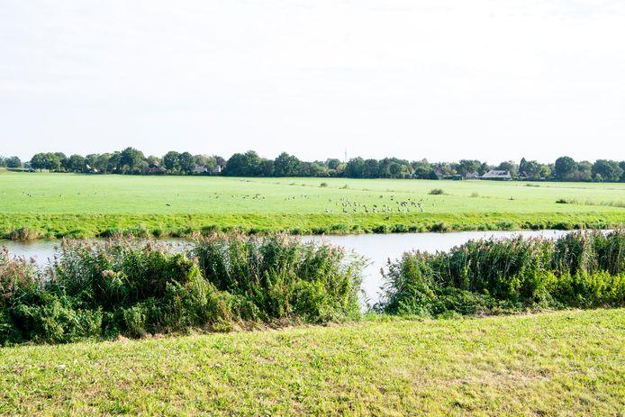 Trekt het nieuwe open water in de Baalder Uiterwaard straks vooral weidevogels? Of toch wilde watervogels, die het vogelgriepvirus kunnen verspreiden?