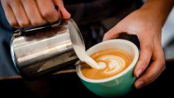 Wat doet cafeïne precies met onze hersenen?