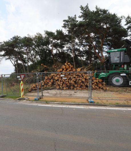 Voor de nieuwste snufjes op de weg zijn langs de A58 bij Oirschot maar liefst 1900 bomen gekapt