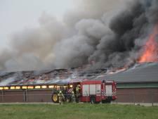 Brand in schuur: duizenden kippen komen om in Renswoude