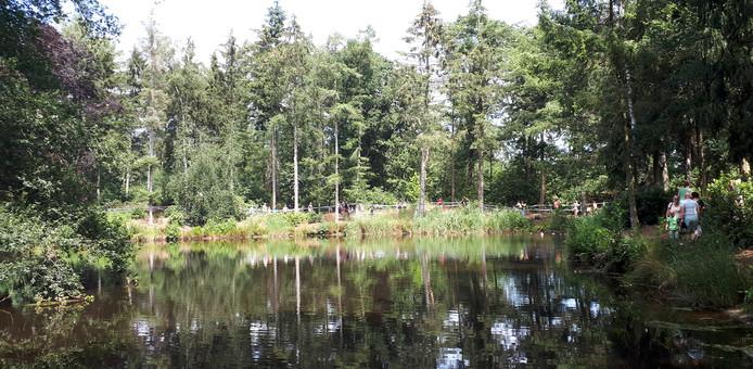 Veldrit van ongeveer  450 meter over het terrein bij Volksabdij Ter Duinen in Ossendrecht.