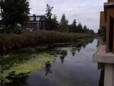 Politie vist autodief uit sloot in Leidsche Rijn