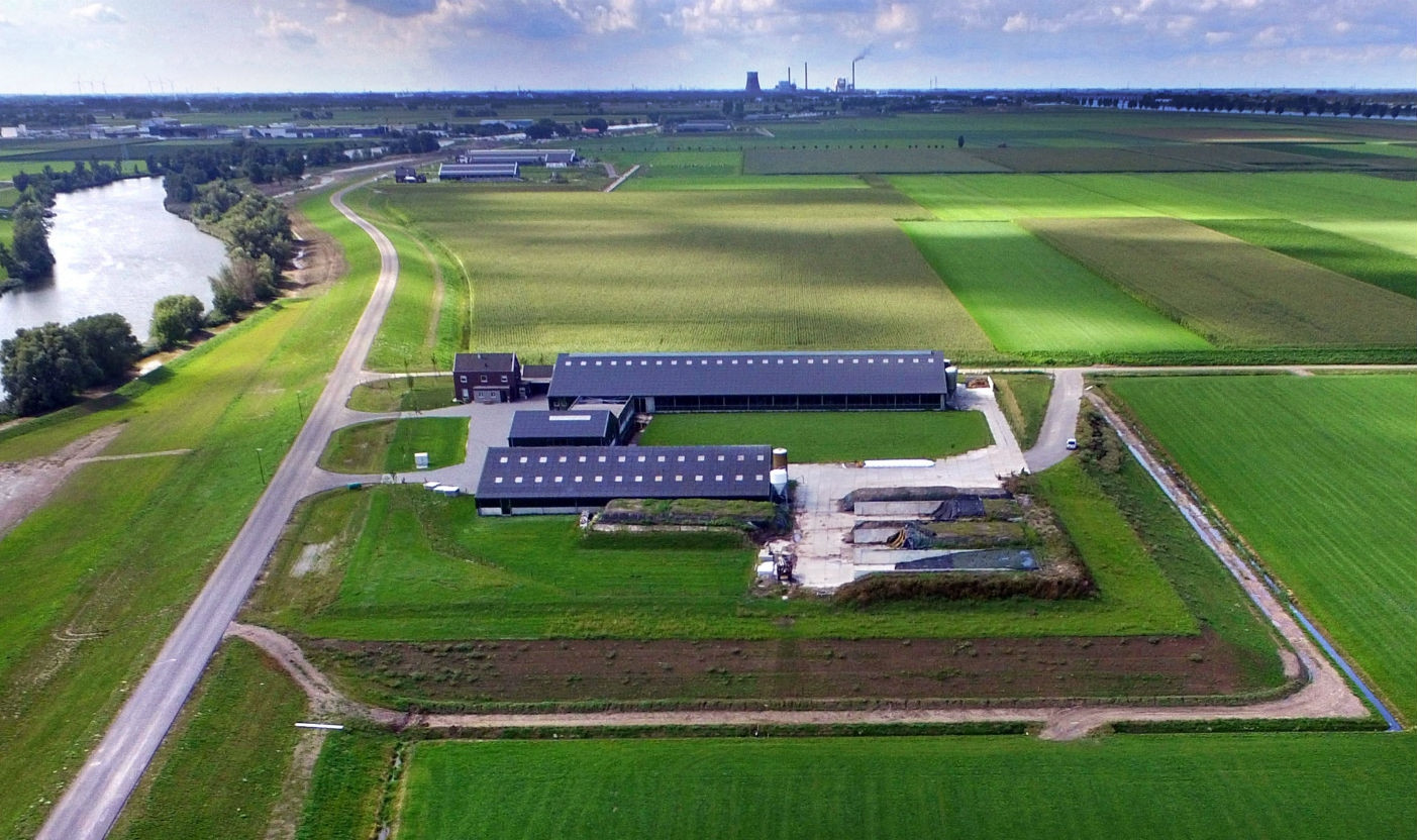 Overdiepse polder Waspik