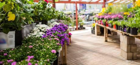 Het plantencentrum: naast verkoper ook school en speelkamer