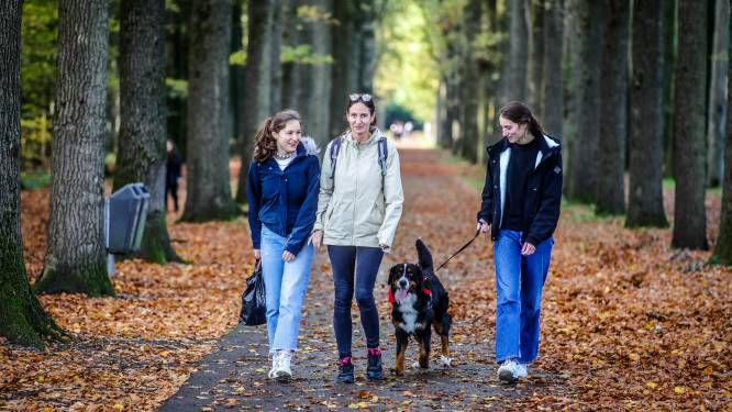 Sensoren in 13 West-Vlaamse provinciedomeinen brengen hitte en droogte in kaart