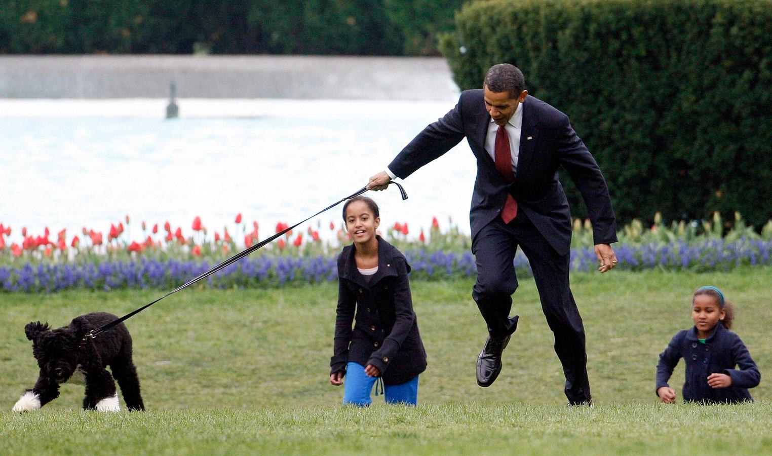 President Barack Obama wordt bijna omver getrokken door de zes maanden oude Bo tijdens het voorstellen van het nieuwe gezinslid met zijn dochters Malia en Natasha aan de media, in april 2009.