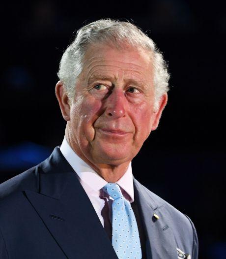 'Charles wil kleinere koninklijke familie, zonder Harry en Meghan'