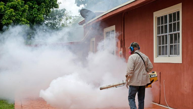 Een ongediertebestrijder in Miami verdelgt muggen. Beeld ap