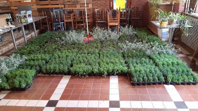 Tiens buurtinitiatief fleurt straatbeeld op met 180 bloembakken