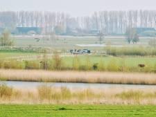 Hangplek vol rotzooi in de polder bij Terneuzen: 'Straks slikt mijn koe een blikje in'