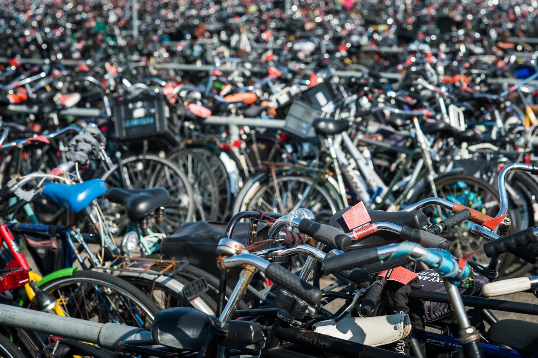 Het fietsdepot. De meeste mensen laten hun weggeknipte fiets hier overigens rustig staan.  Beeld Mats van Soolingen