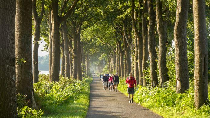 Het Routebureau zoekt zeventig wandel- en fietsliefhebbers om als 'routecontroleur' te fungeren. Onder andere voor natuurgebied de Weerribben-Wieden.