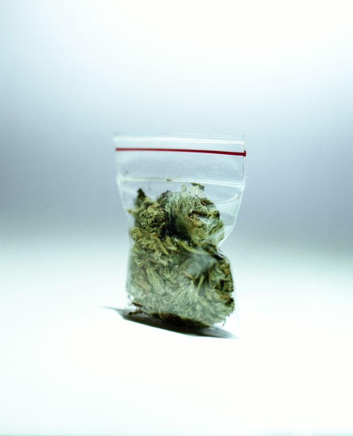 Wiet verkoop, marihuana, Nederland